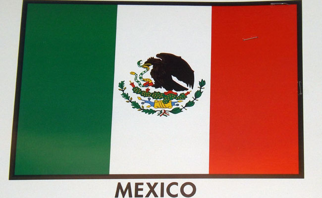 Mexican Flag (photo by Claudia Gonzalez)