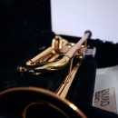 Trumpet in its case.