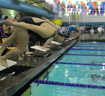 Sophomore Michaela O'hara dives into the water to commence her event (photo by Deja McGill).
